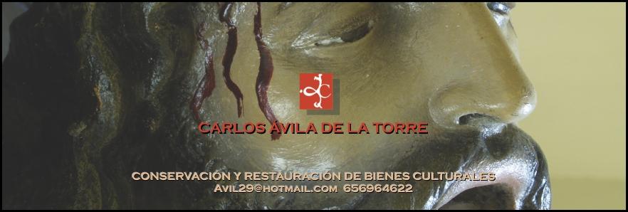 carlos_avila